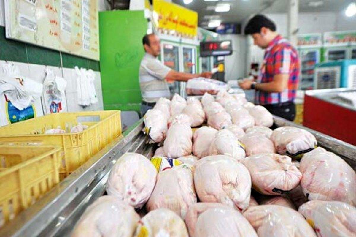 قیمت مرغ امروز بدون تغییر باقی ماند