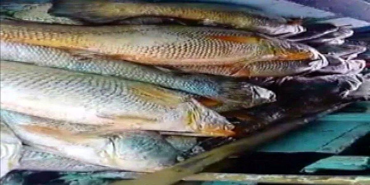 اخبار روز: راز ماهیگیر برملا شد