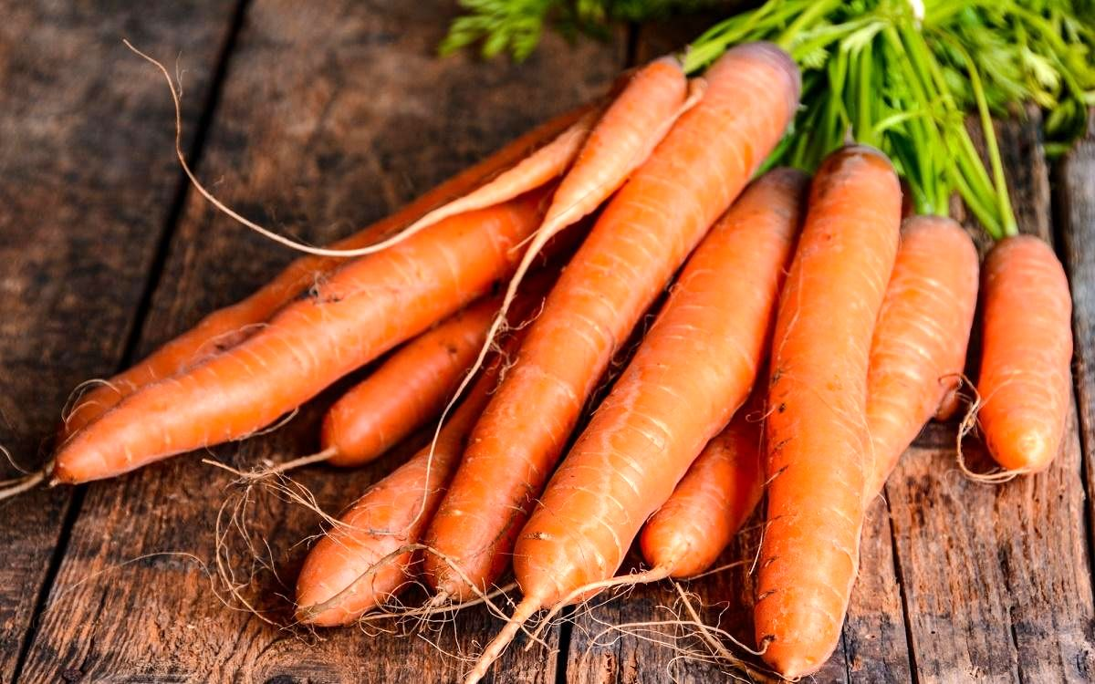 قیمت هویج هر روز گران تر از دیروز| عاملی گرانی هویج