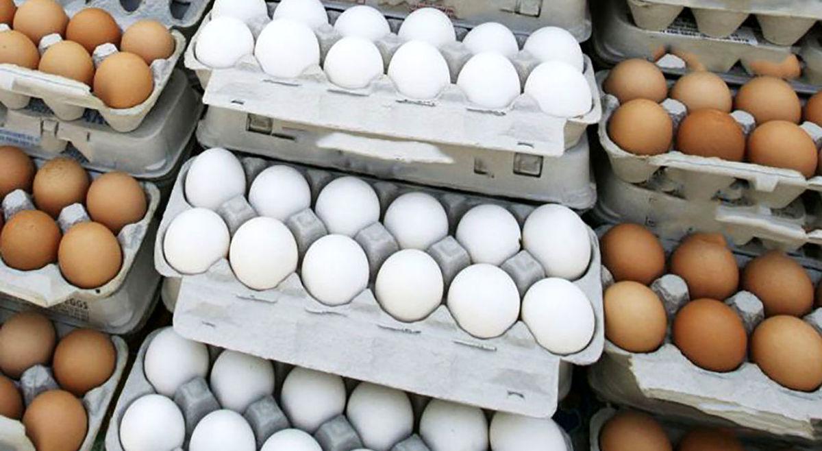 دو رکورد عجیب تخم مرغ در یک هفته!